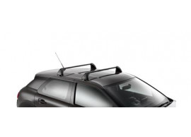 1610033080 Citroën C4 Cactus dakdragers (zonder dakreling)