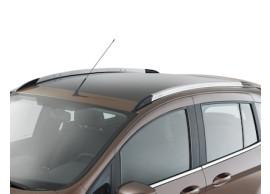 Ford-B-MAX-2012-2018-dakrails-zilver-zwart-2002327