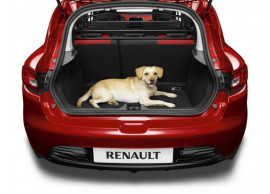 8201321369 Renault Clio 2012 - 2019 hondenrek