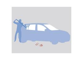 Dacia Sandero 2008 - 2012 alarm met afstandsbediening 6001998204