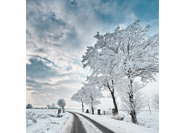 Volkswagen-Passat-GTE-Winterpakket-3G0071002-SET