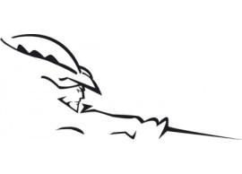 musketier-peugeot-308-decor-sticker-3088400